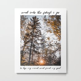 And Into the Forest I Go To Lose My Mind And Find My Soul | Nature Photography and John Muir Quote Metal Print