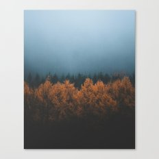 Nature's Gradient Canvas Print