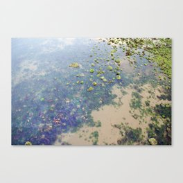 Sea bed Canvas Print