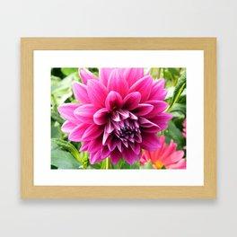 Floral Beauty #2 Framed Art Print