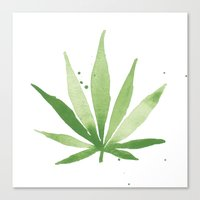 cannabis Canvas Prints featuring Cannabis  by THE AESTATE