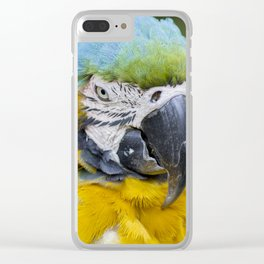 Macaw - Bird Photography Clear iPhone Case
