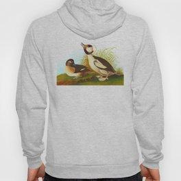 Bufflehead Duck Vintage Illustration Hoody