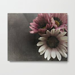 gazania flowers Metal Print