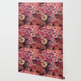 Flower carpet(51). Wallpaper