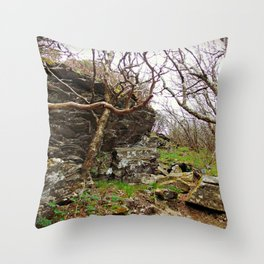 Room To Breathe Throw Pillow