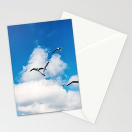 Seagulls against blue sky | Travel Photography France, Corsica | Fine art photo print Stationery Cards