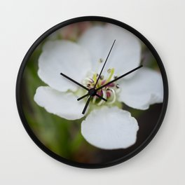 Pear Tree Flower White Wall Clock