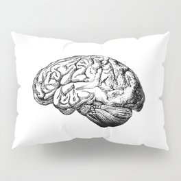 Brain Anatomy Pillow Sham