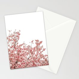 Cherry Blossoms (Color) Stationery Cards