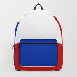 Flag of schleswig-Holstein Backpack