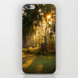 Sunburst at Litchfield National Park iPhone Skin