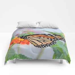 The Monarch Has An Angle Comforters