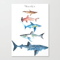 sharks Canvas Prints featuring Sharks by Amee Cherie Piek