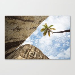 Virgin Gorda Batholithic Boulders and a Sunny Palm Tree Canvas Print