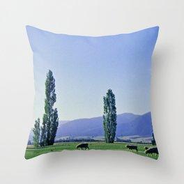 Canterbury Sheep Throw Pillow