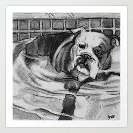 Wading Bull Dog Art Print