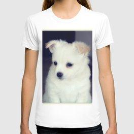 Chihuahua Pup T-shirt