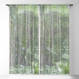 Rainforest umbrella Sheer Curtain