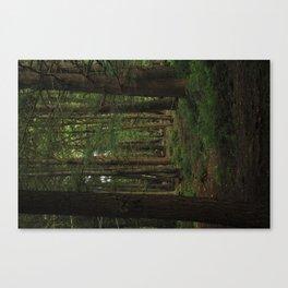 Summer Adventure Canvas Print