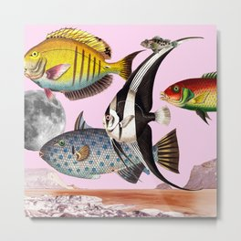 Fish World Pink Metal Print