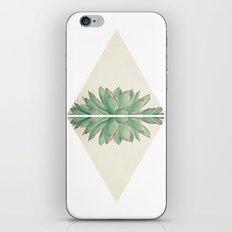 Echeveria II iPhone Skin