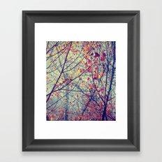 trees misty morning Framed Art Print
