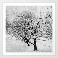 blankets Art Prints featuring Blankets of Snow by Bella Blue Photography