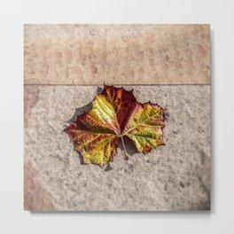 Simple Leaf Metal Print
