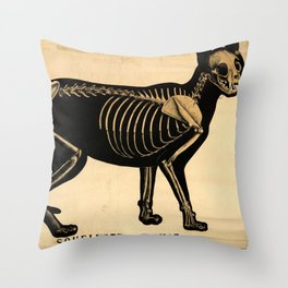 Squelette de chat Throw Pillow