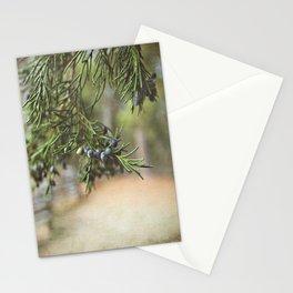 Winter's Bounty Stationery Cards