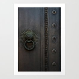 Dark Entry  Art Print