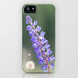 Lupines and dandelions iPhone Case