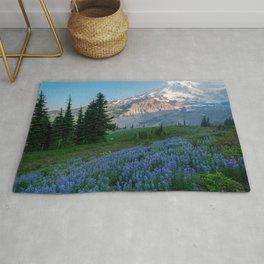Desktop Wallpapers USA Mount Rainier National Park Nature Spruce mountain park Lupinus Mountains Parks Rug