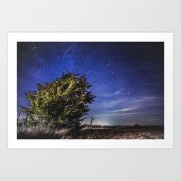 Geminid Meteor Shower 2012 Art Print