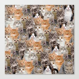 cats pattern lot of funny animals cheesy crazy Canvas Print