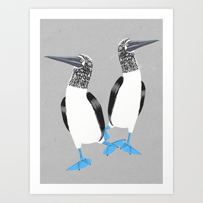 Blue-footed booby Art Print