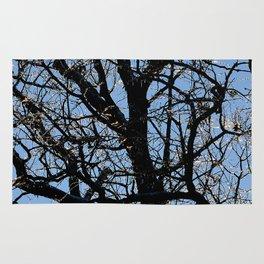 icy tree Rug
