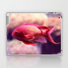 Red Fish Laptop & iPad Skin