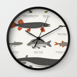 Infographic Guide to Water Animals Wall Clock