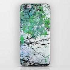 Autumn 5 Green iPhone & iPod Skin