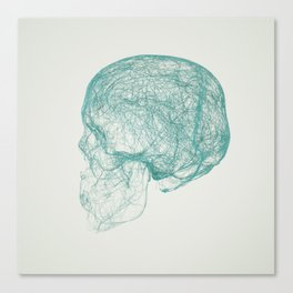 skull trails Canvas Print