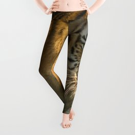 Gracious Marvelous Adult Jungle Tiger In High Grass Close Up Ultra HD Leggings