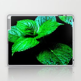 Mint Leaves Laptop & iPad Skin