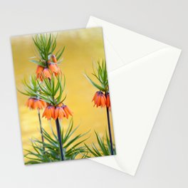 Orange lily flowers Fritillaria imperialis Stationery Cards