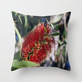 BOTTLE BRUSH (Callistemon) Throw Pillow