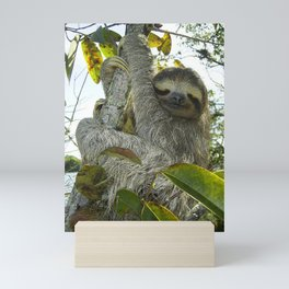 Smiling Sloth Mini Art Print