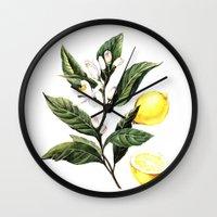 lemon Wall Clocks featuring Lemon by Anna Yudina