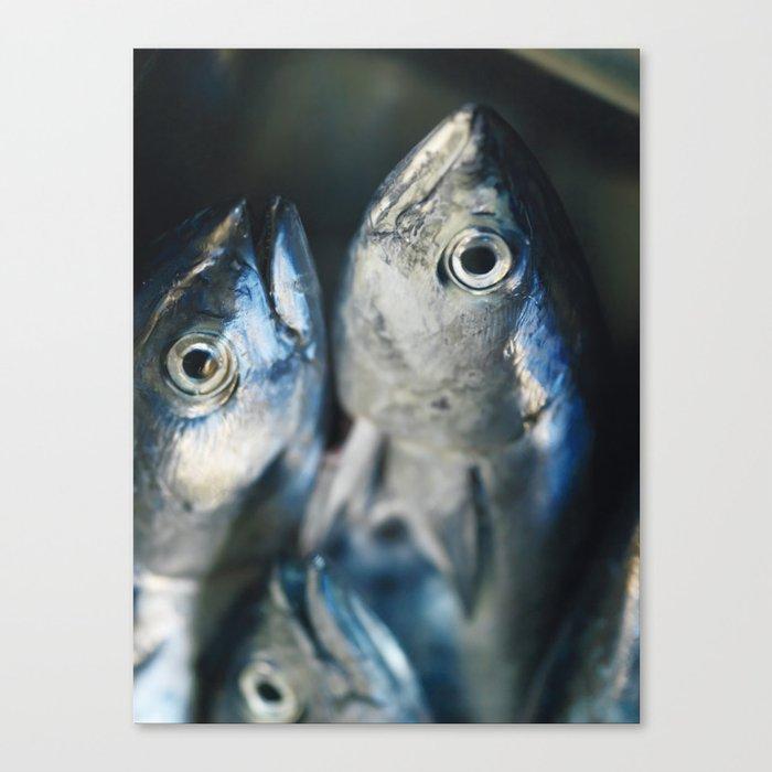 Tuna fish - still life - fine art - photo - print, high quality,macro, interior design, wall decor Canvas Print