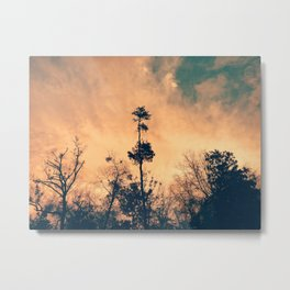 Above All Others Metal Print